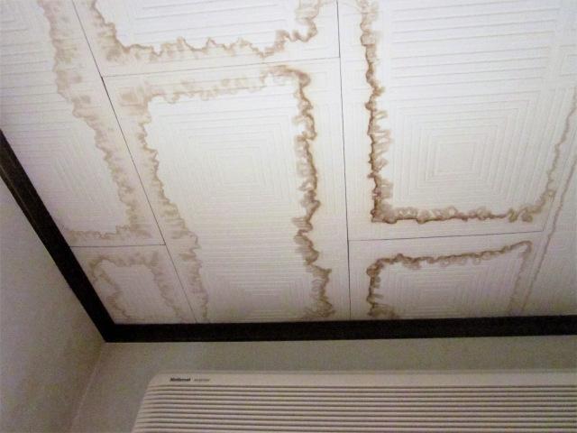 大阪でポリウレアのご相談なら~断熱・防水に優れた塗装で建物を守る~